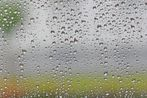 Im Visier: Fensterblick