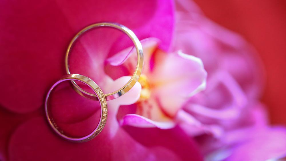 """Im Visier """"La vie en rose"""""""