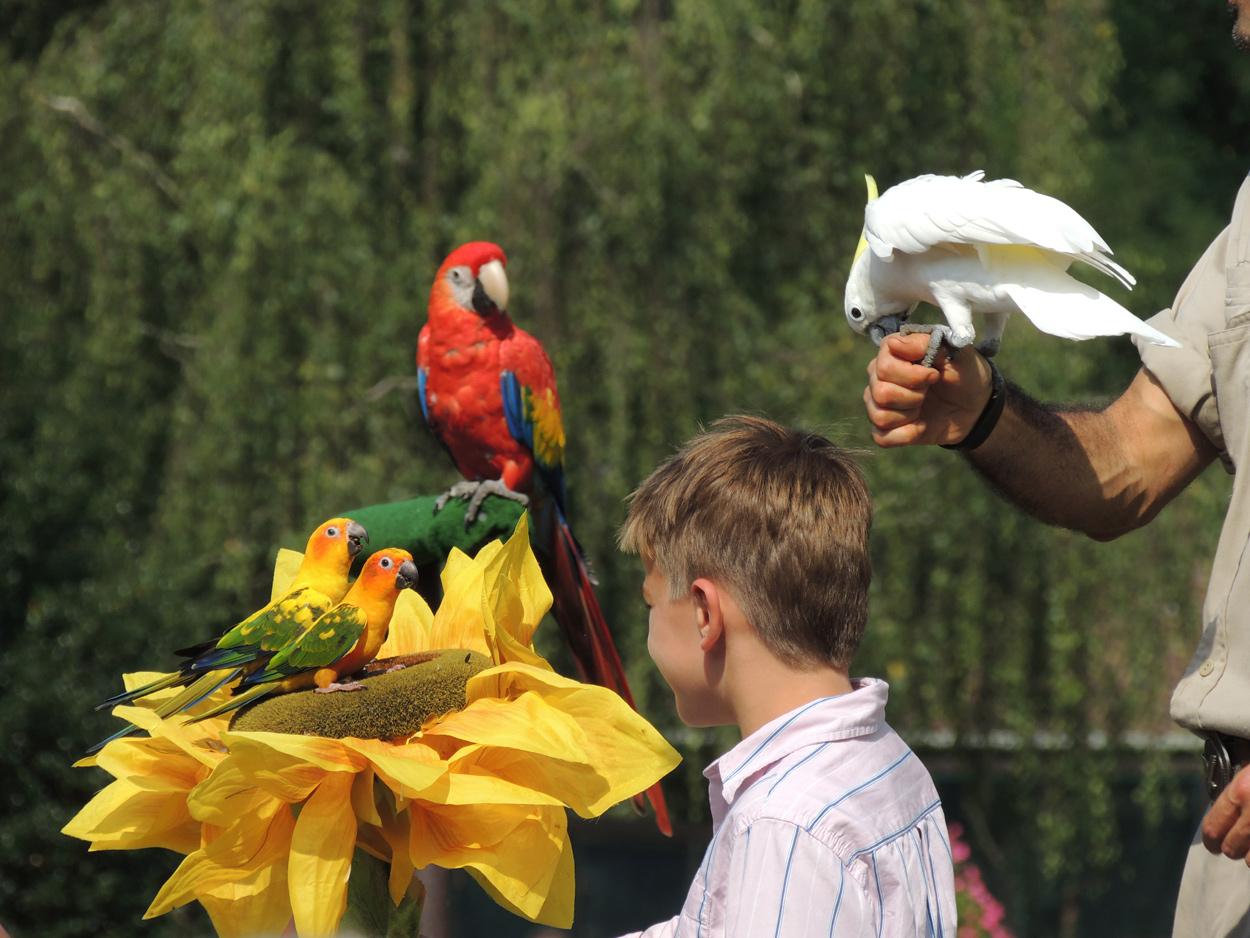 Im Vogelpark ... 1