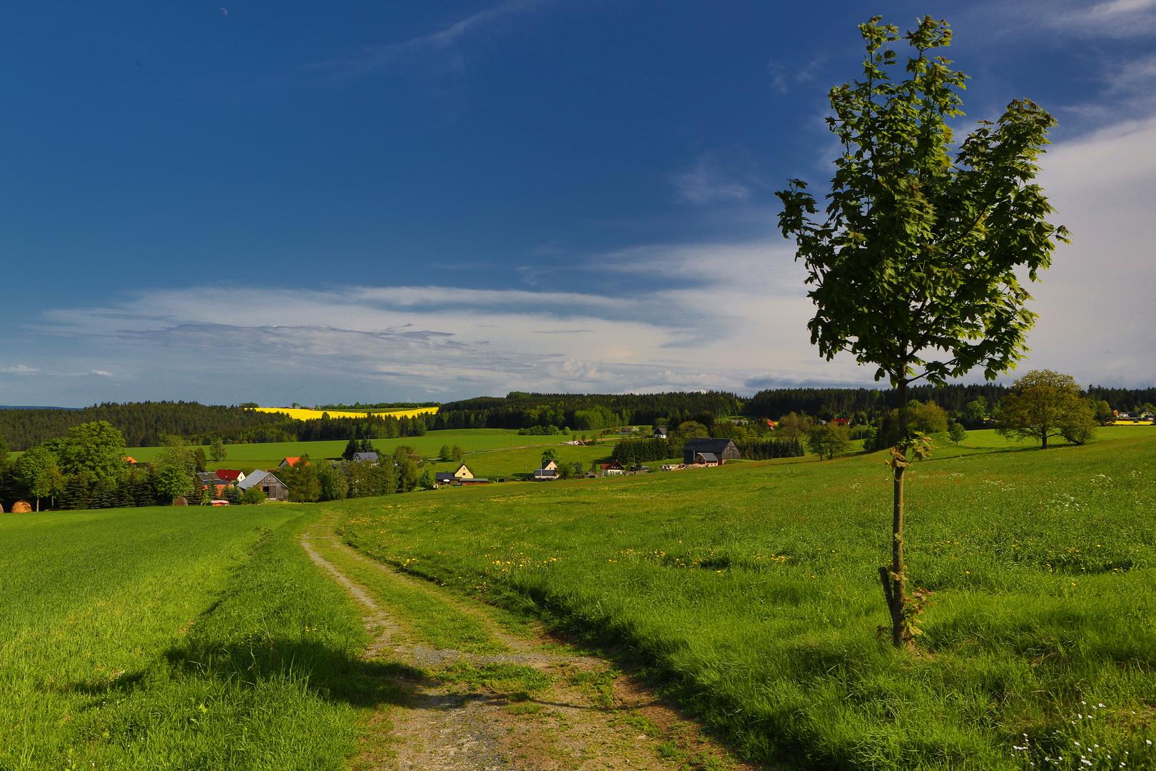 Im Vogtland