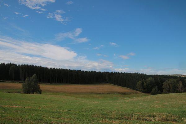 Im Vuuchtland (3)