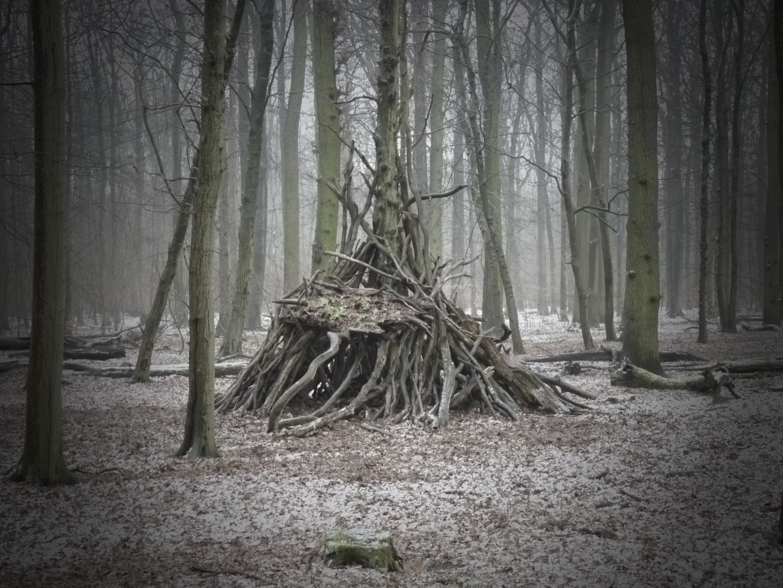 ... im Wald ...