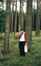 im Wald