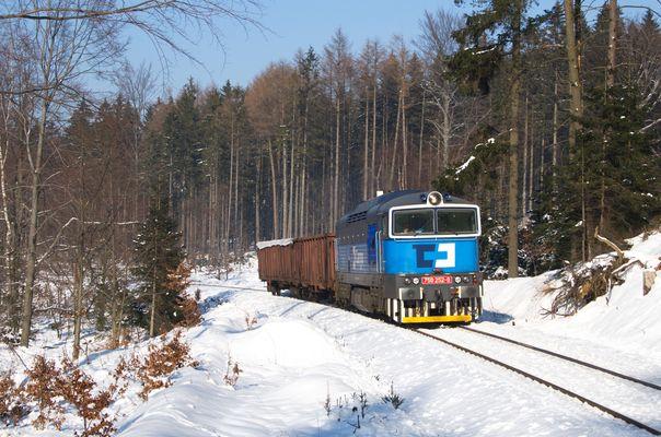 Im Wald am Tannenberg