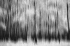 Im Wald der verlorenen Seelen # 0241