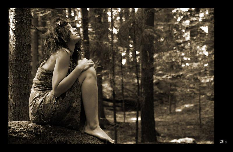 Im Wald - ganz allein ...