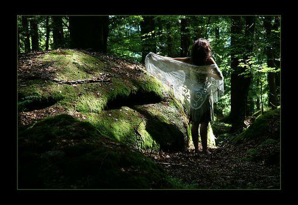 Im Wald - ganz allein - 7