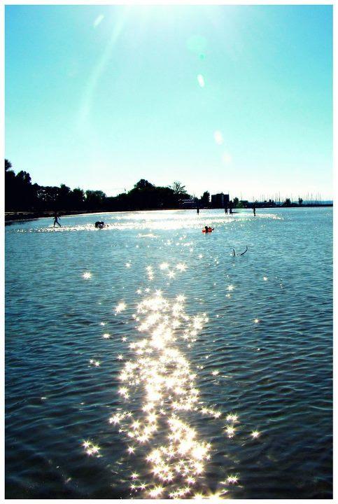 Im Wasser gespiegelt