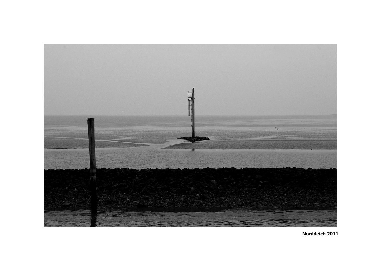 Im Wattenmeer......
