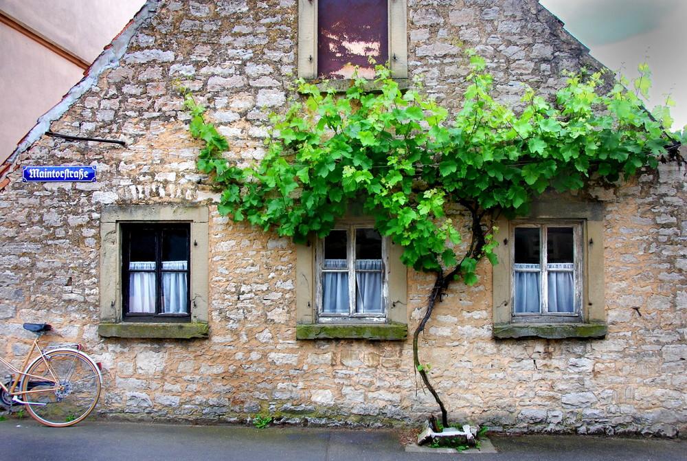Im Weindorf II