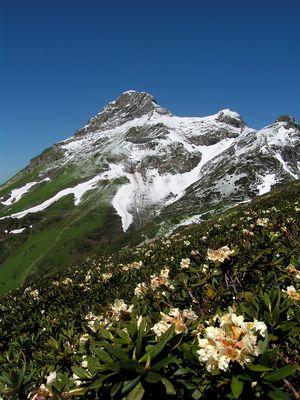 Im wilden Kaukasus