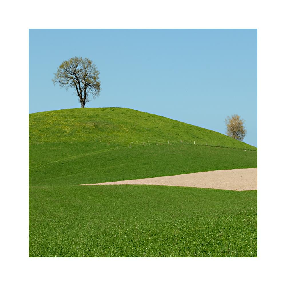im willisauer Landschaft