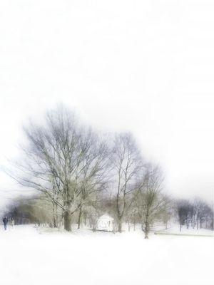 Im Wintertraumland unterwegs...