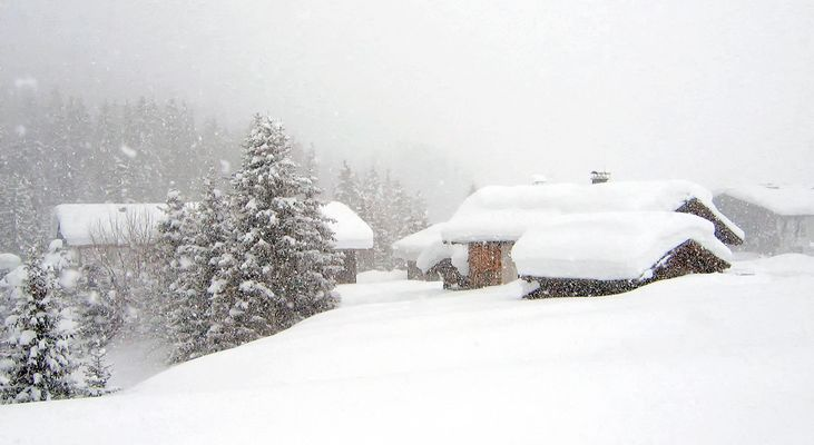 Im Winterwunderland !!