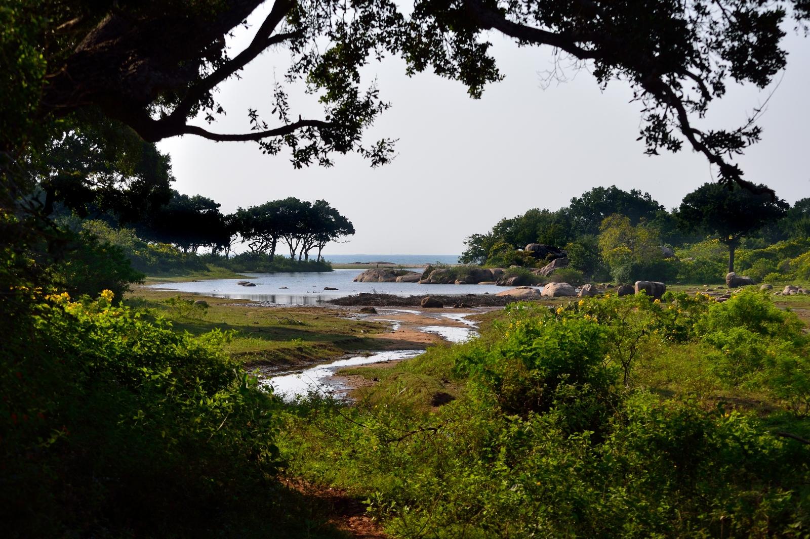 Im Yala-Nationalpark: Blick zum Äquator