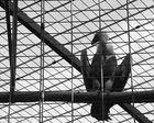 Im Zoo 10