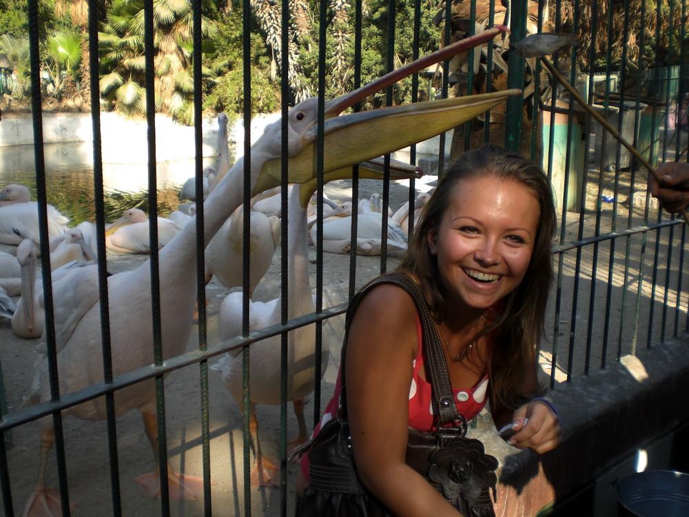 Im Zoo in Kairo