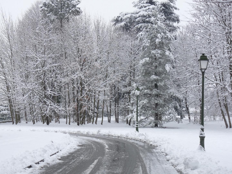 Image de neige