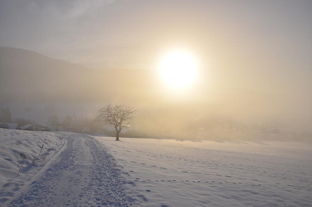 Immer die Sonne...