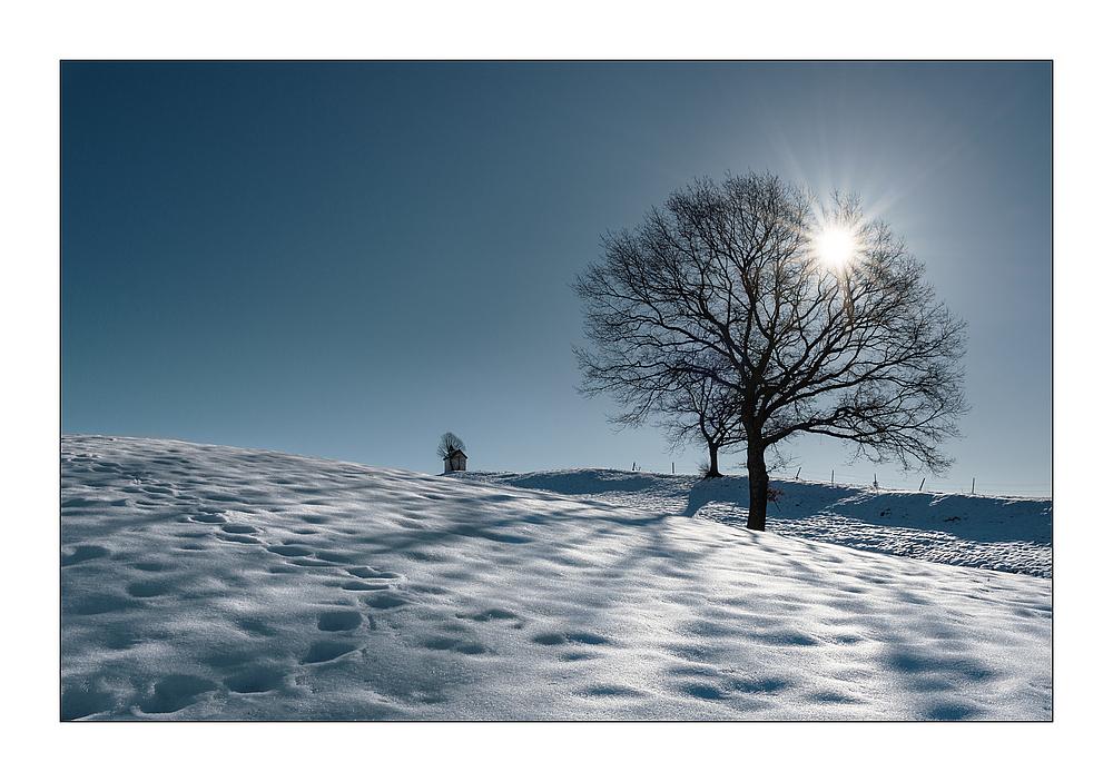 Immer noch Winter #2...