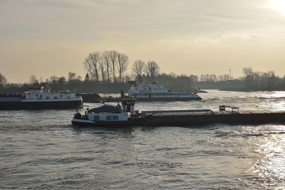 Immer was los - auf dem Rhein.