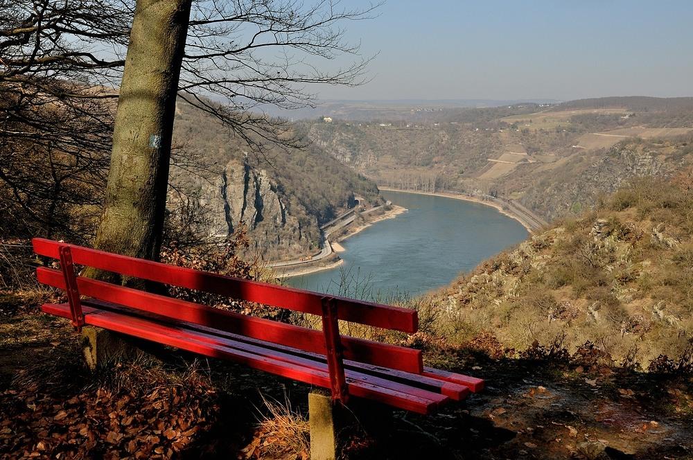 Immer wieder fantastische Blicke ins Rheintal hat. ..
