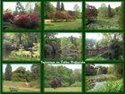 Impresionen von Schloss Wolfsgarten