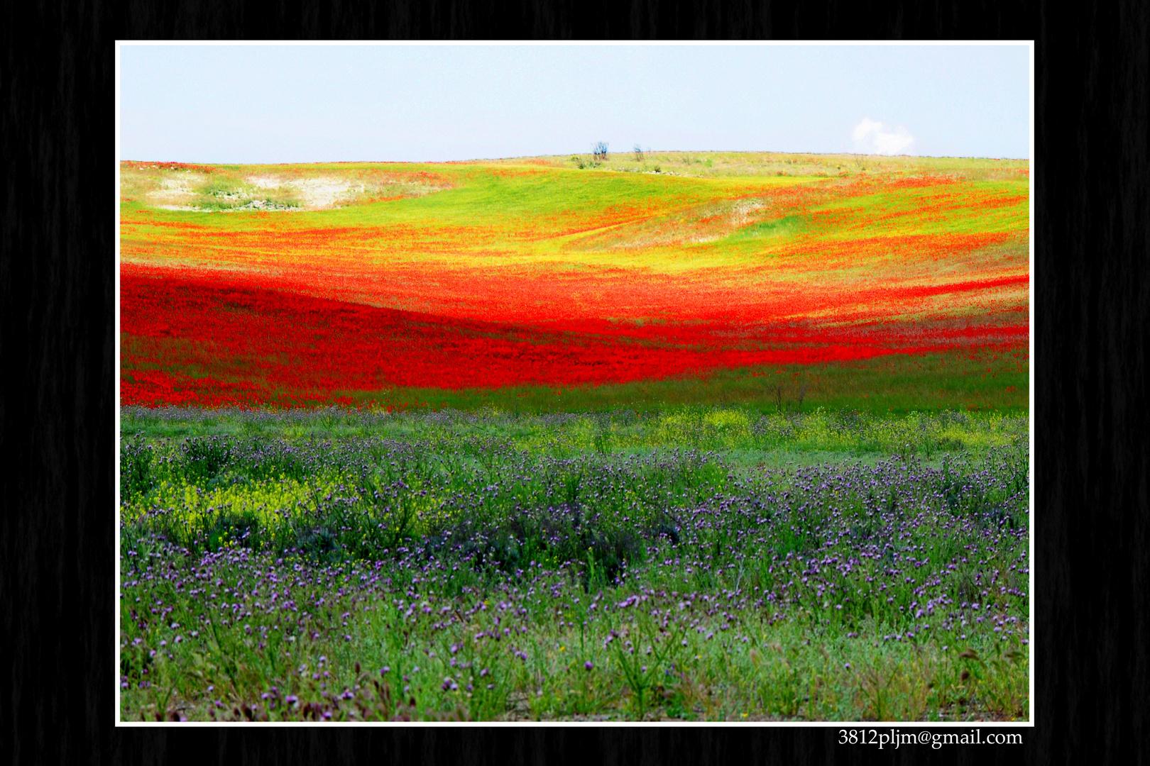 Impresionista Primavera