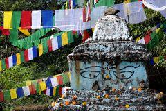 Impression 10: Foto- und Erlebnisreise Himalaya Staat Sikkim - Nordostindien