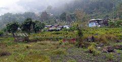Impression 21: Foto- und Erlebnisreise Himalaya Staat Sikkim - Nordostindien