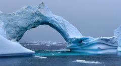 Impression 22: Foto- und Erlebnisreise -Grönland Eisberge und andere Impressionen- im Sept. 2017