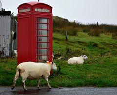 Impression 29: Fotoworkshop -Nord Schottland im Herbst-