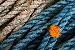 Impression 38: Fotoworkshop -Nord Schottland im Herbst-