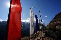 Impression 42: Foto- und Erlebnisreise Himalaya Staat Sikkim - Nordostindien