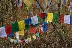 Impression 45: Foto- und Erlebnisreise Himalaya Staat Sikkim - Nordostindien