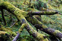 Impression 49: Fotoworkshop -Nord Schottland im Herbst-