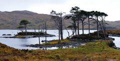 Impression 50: Fotoworkshop -Nord Schottland im Herbst-