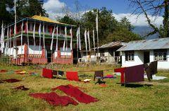 Impression 52: Foto- und Erlebnisreise Himalaya Staat Sikkim - Nordostindien
