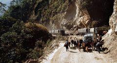 Impression 58: Foto- und Erlebnisreise Himalaya Staat Sikkim - Nordostindien