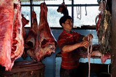 Impression 60: Foto- und Erlebnisreise Himalaya Staat Sikkim - Nordostindien