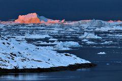Impression 8: Foto- und Erlebnisreise -Grönland Eisberge und andere Impressionen- im September 2017