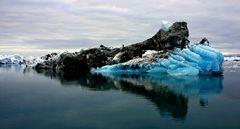 Impression 9: Foto- und Erlebnisreise -Grönland Eisberge und andere Impressionen- im September 2017