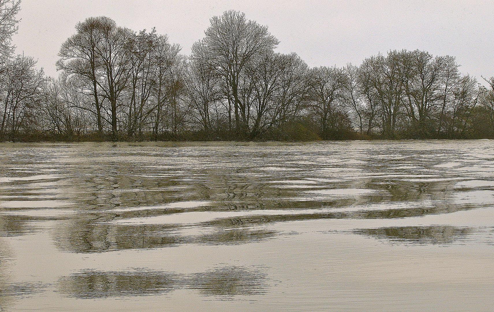 ... Impressionen an der Saône ...