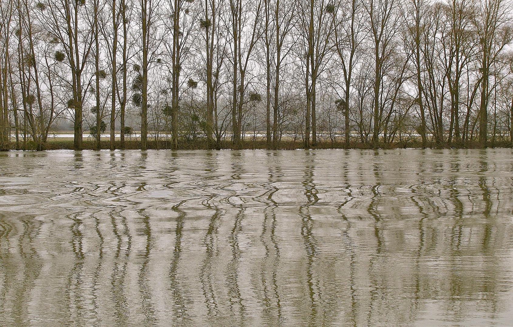 .. Impressionen an der Saône ..