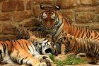 Impressionen aus dem Zoo Aschersleben 1
