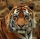 Impressionen aus dem Zoo Aschersleben 5
