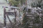 Impressionen im Winter