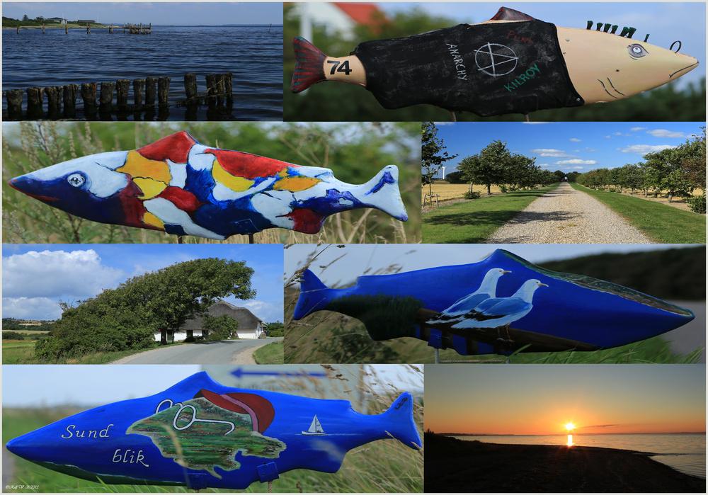 Impressionen Insel Fur Dänemark 2013