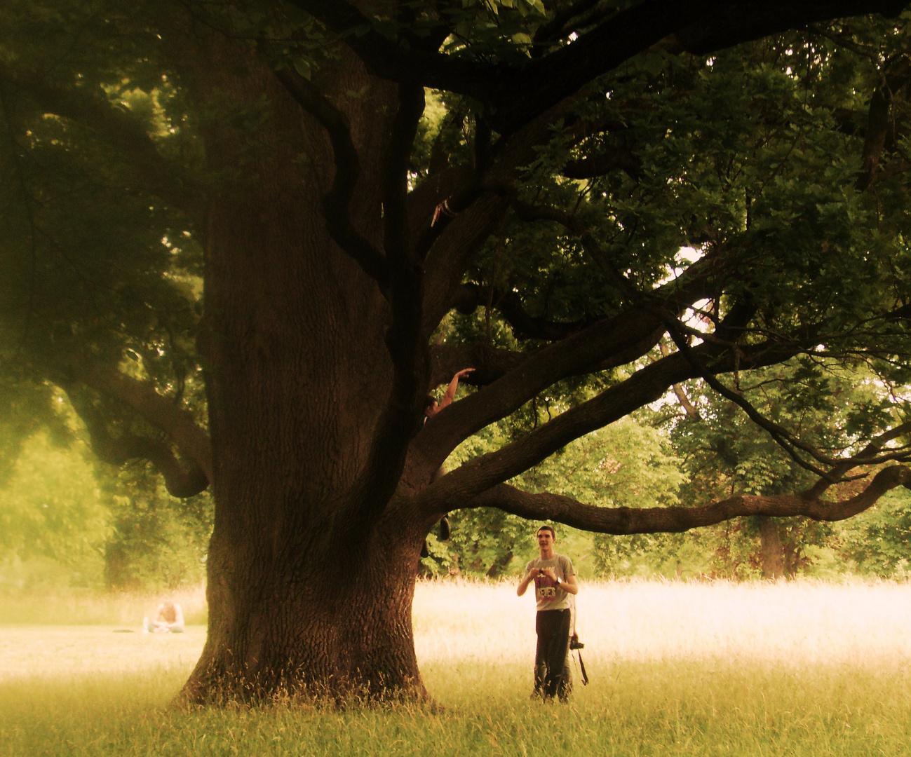 Impressionen i.Rosensteinpark 5 Menschen und Bäume