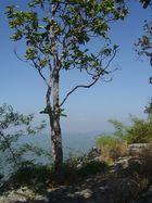 Impressionen Thailand 3